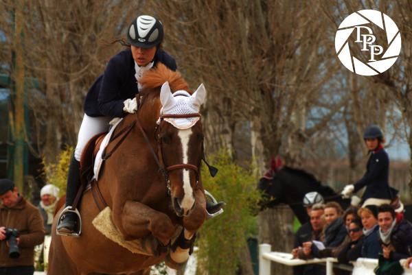 Gara di equitazione