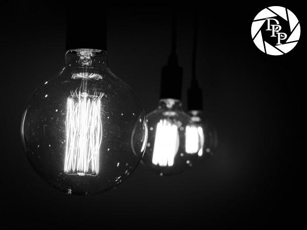 20311 - Bulbs