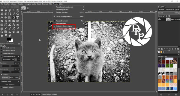 [DSCF3726] (importata)-1.0 (Colore RGB interi a 8 bit gamma, GIMP built-in sRGB, 1 livello) 4018x2998 – GIMP