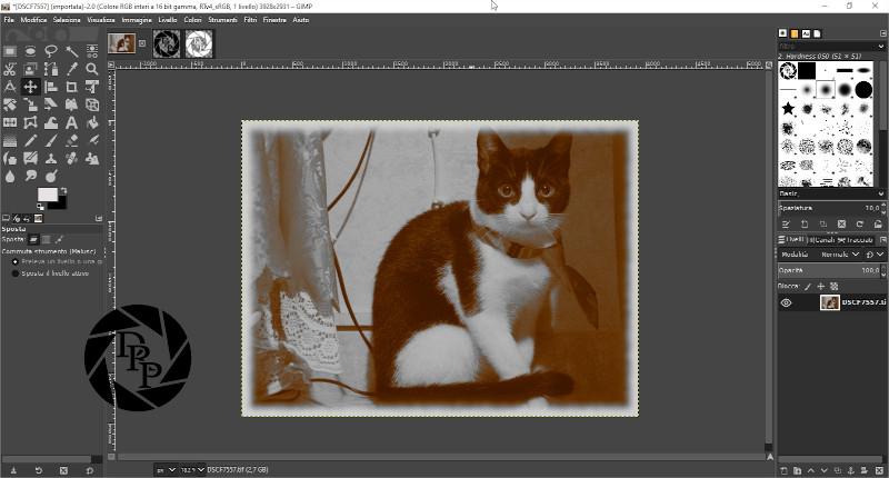 [DSCF7557] (importata)-2.0 (Colore RGB interi a 16 bit gamma, RTv4_sRGB, 1 livello) 3928x2931 – GIMP_2
